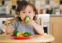 Gag Reflex? Jangan Takut Bagi Anak Makan!